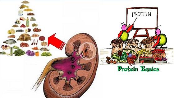 Bệnh thận nên ăn gì và không nên ăn gì?